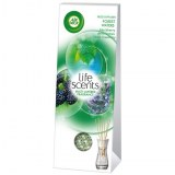 Palette Air Wick diffuseur Forrest Water